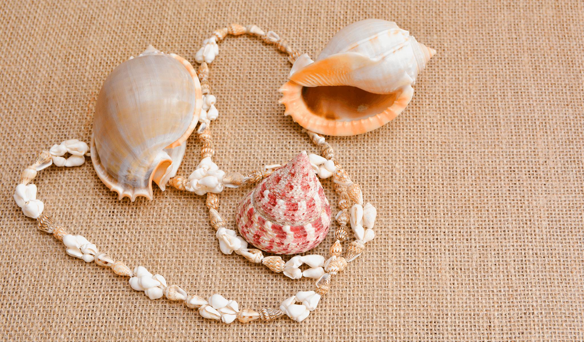 deniz kabuğundan kolye, plaj, deniz, sahil