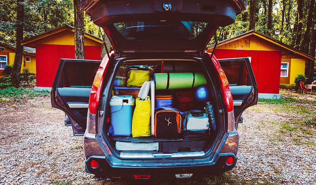 bavul, bagaj, araba