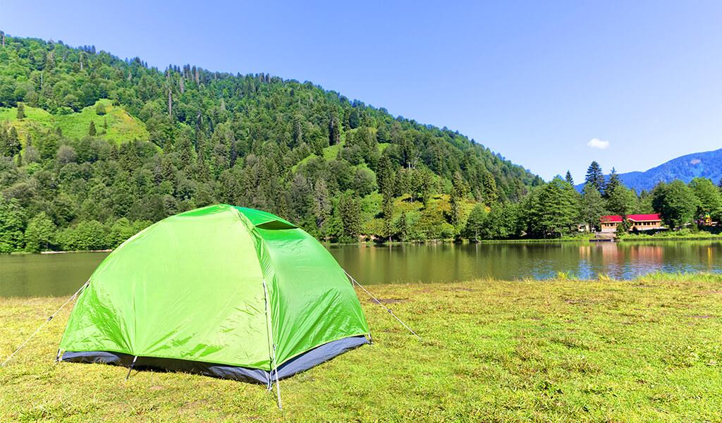doğa, çadır kampı, orman
