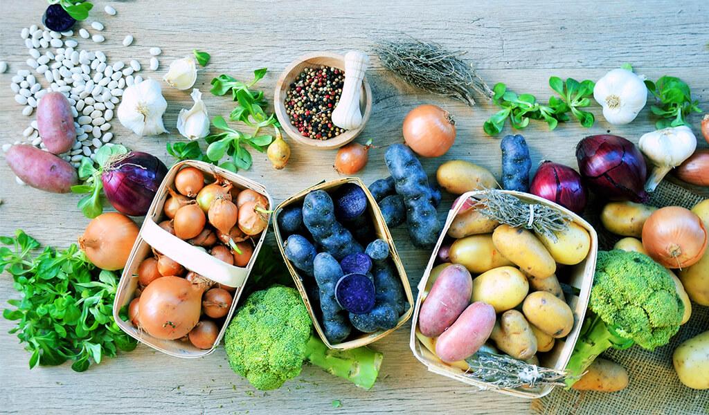 organik meyveler, detoks kampı