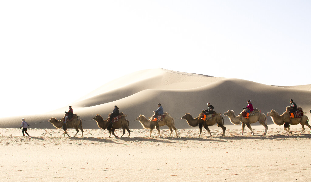 silk road, taşıma, desert, logictics