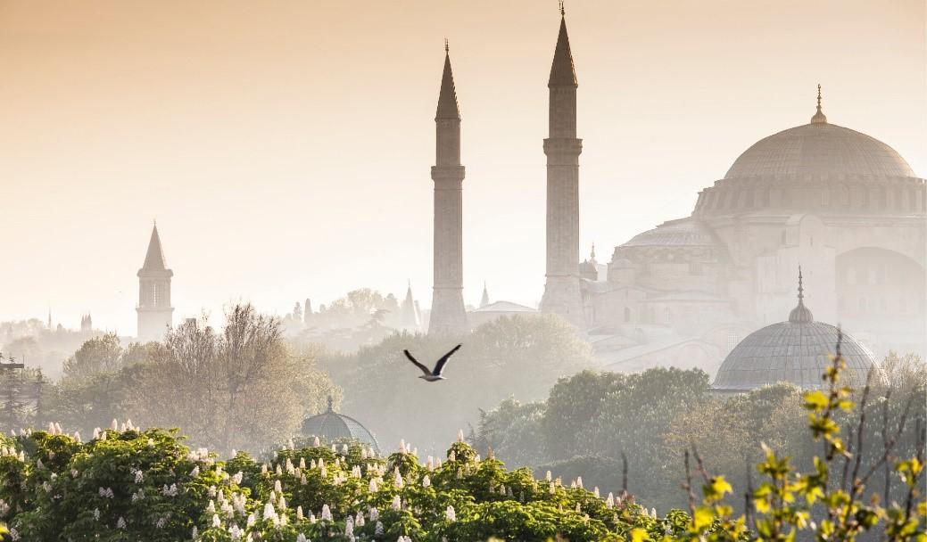 kuş bakışı fatih, istanbul, haliç