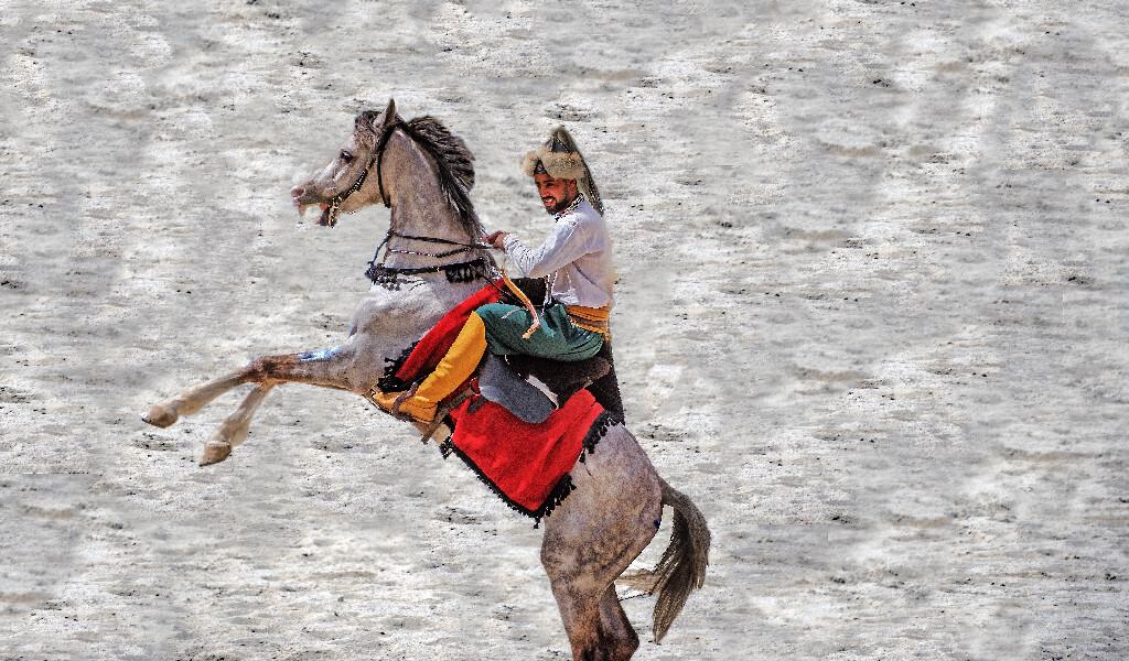 geleneksel türk sporları