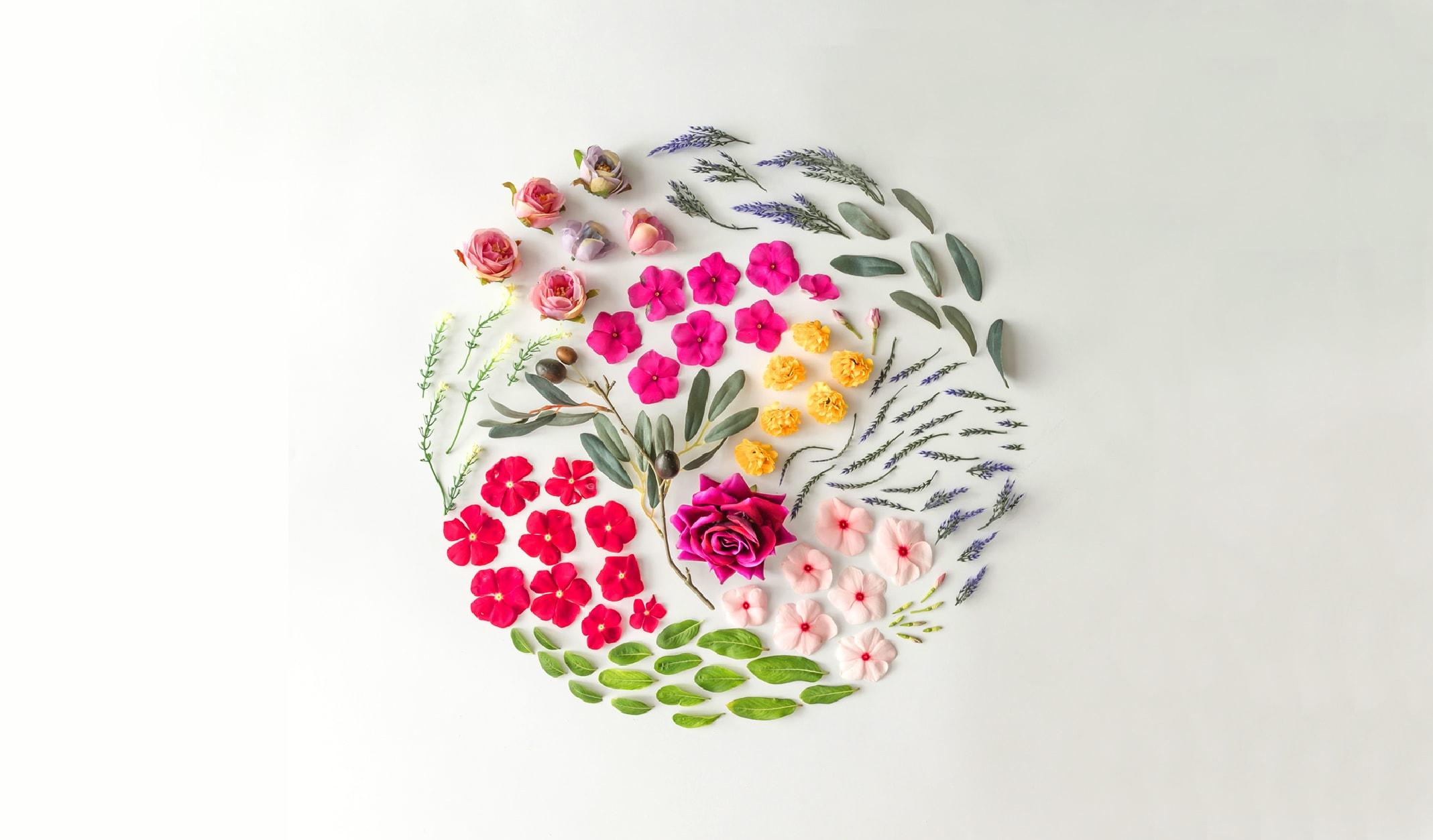 Baharda Açan Rengârenk 10 çiçek Halkbank Kültür Ve Yaşam