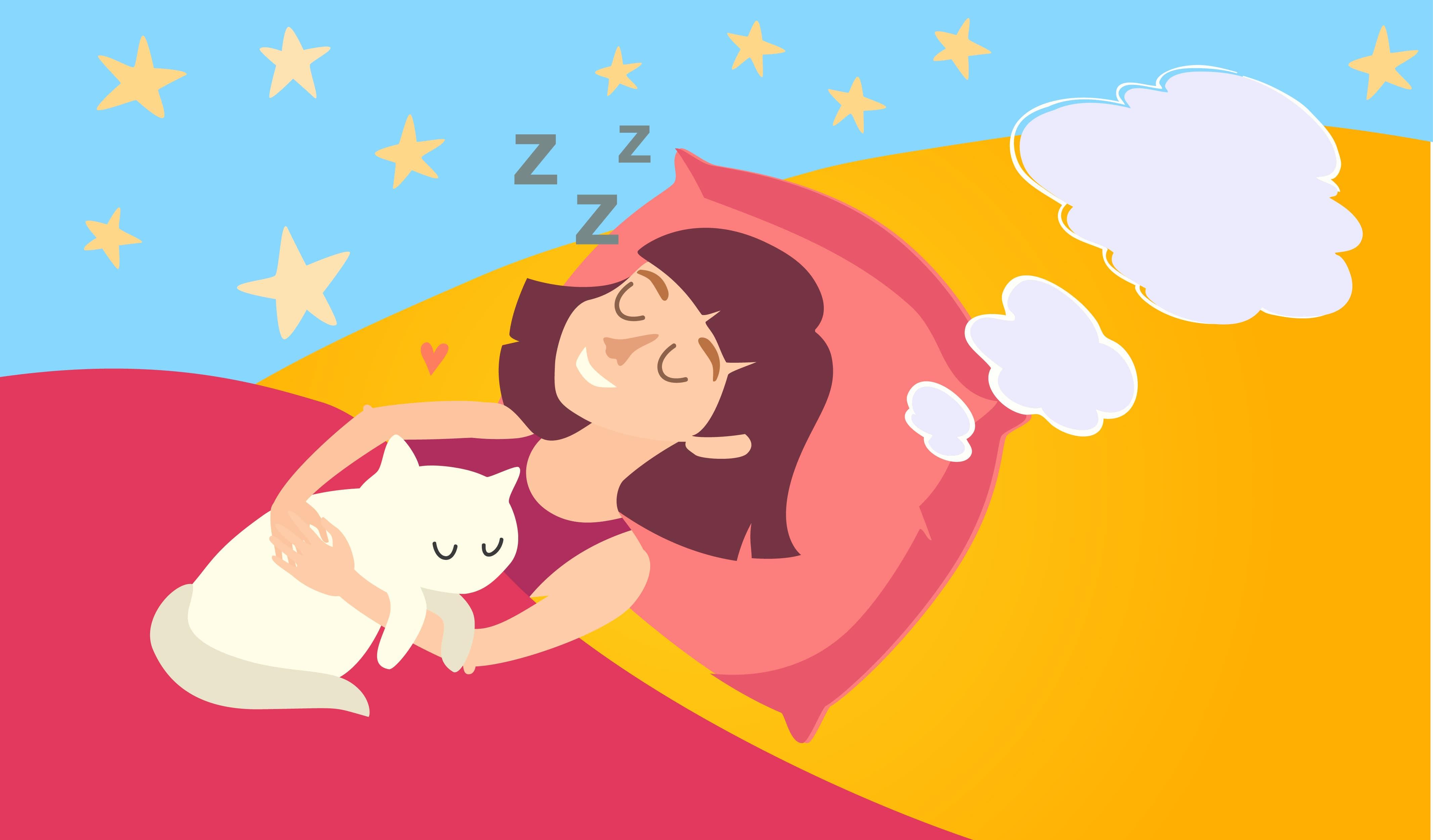 dream, sleep, cat