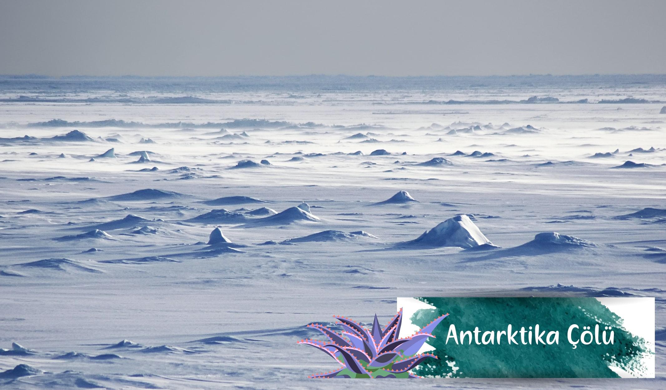 en büyük çöller, antarktika